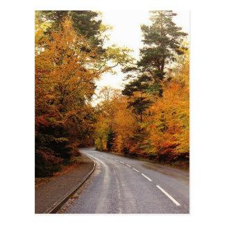Autumn in Strathspey Postcard