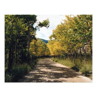 Autumn in the Colorado Mountains Colorado U S A Flyer
