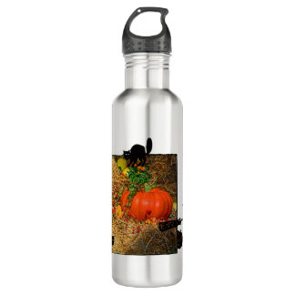 Autumn in the Fall Pumpkin Patch 710 Ml Water Bottle