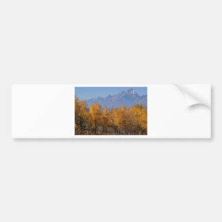 Autumn in the Grand Tetons Bumper Stickers