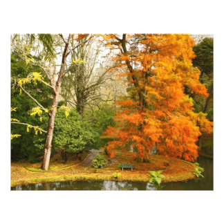 Autumn in the park 21.5 cm x 28 cm flyer
