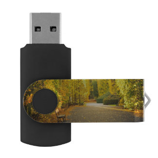Autumn in the park in Gdansk, Poland USB Flash Drive
