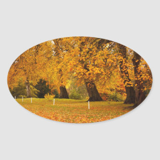 Autumn in the park oval sticker