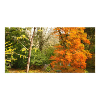 Autumn in the park photo card template