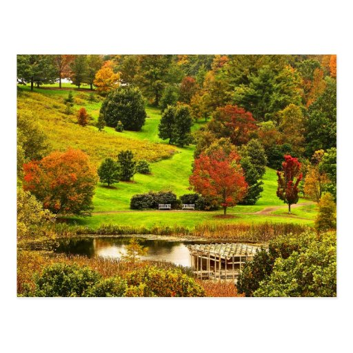 Autumn in the Park Postcards