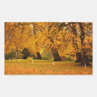 Autumn in the park rectangular sticker
