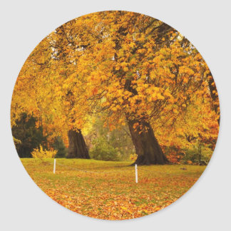 Autumn in the park round sticker
