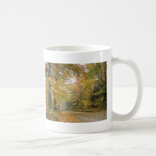 Autumn in Vermont Basic White Mug