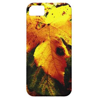 Autumn iPhone 5 Case