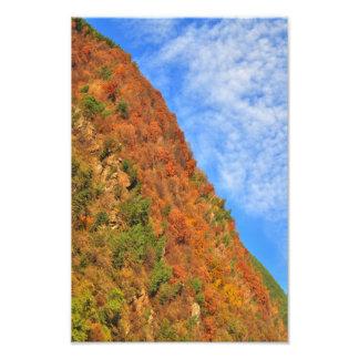 Autumn is here photo print