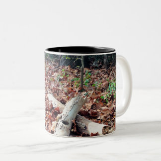 Autumn Java Two-Tone Coffee Mug