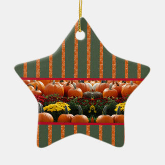Autumn Kürbis meadow orange green strips Ceramic Star Decoration