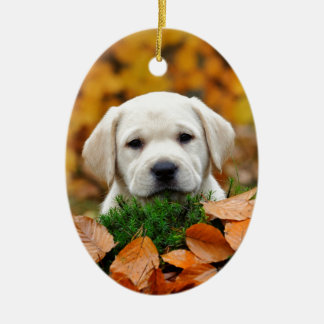 Autumn Labrador Ceramic Oval Decoration