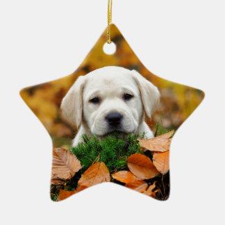Autumn Labrador Ceramic Star Decoration