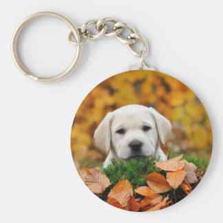 Autumn Labrador Key Ring