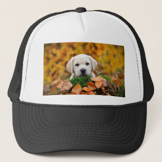 Autumn Labrador Trucker Hat