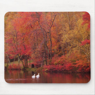 Autumn Lake Mouse Mat