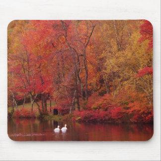 Autumn Lake Mouse Pad