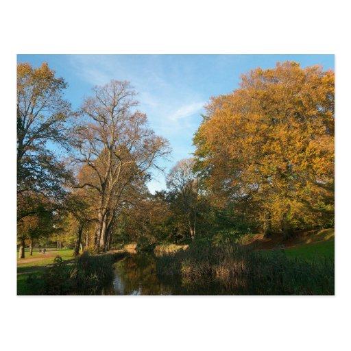 Autumn Landscape Bute Park Cardiff Post Cards