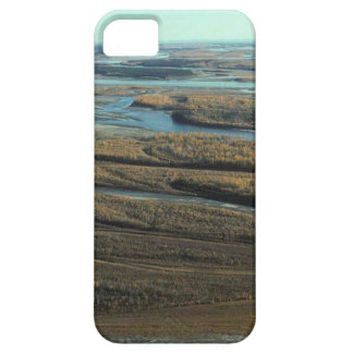 AUTUMN LANDSCAPE IN SWAMP WITH TREES IN FALL COLOR BARELY THERE iPhone 5 CASE