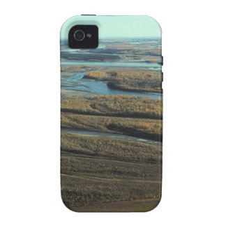 AUTUMN LANDSCAPE IN SWAMP WITH TREES IN FALL COLOR VIBE iPhone 4 COVER