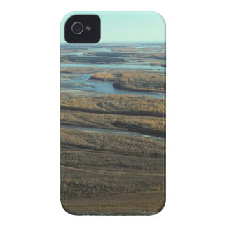 AUTUMN LANDSCAPE IN SWAMP WITH TREES IN FALL COLOR iPhone 4 COVER