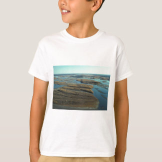 AUTUMN LANDSCAPE IN SWAMP WITH TREES IN FALL COLOR T-Shirt