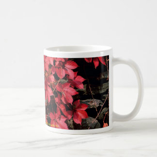 Autumn landscape, New England, U.S.A. from the For Mug