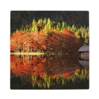 Autumn landscape on a lake maple wood coaster