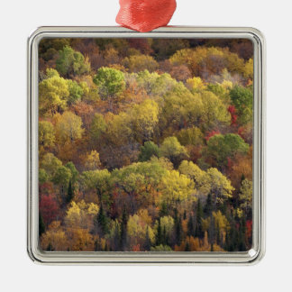 Autumn landscape, Vermont, USA 2 Christmas Ornament
