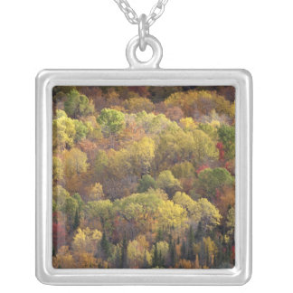 Autumn landscape, Vermont, USA 2 Silver Plated Necklace