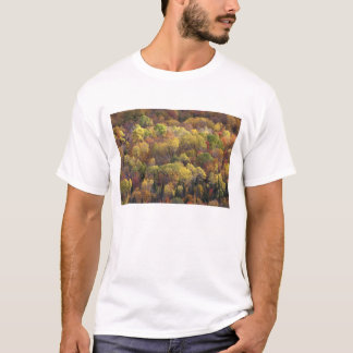 Autumn landscape, Vermont, USA 2 T-Shirt