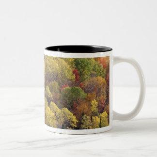 Autumn landscape, Vermont, USA 2 Two-Tone Coffee Mug