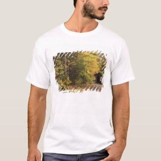 Autumn landscape, Vermont, USA 4 T-Shirt