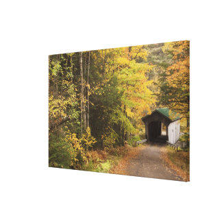 Autumn landscape, Vermont, USA Canvas Print