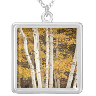 Autumn landscape, Vermont, USA Silver Plated Necklace