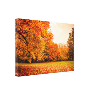 Autumn landscape with colorful trees canvas print