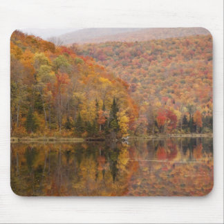 Autumn landscape with lake, Vermont, USA 2 Mouse Mat