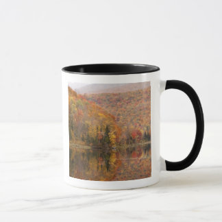 Autumn landscape with lake, Vermont, USA 2 Mug