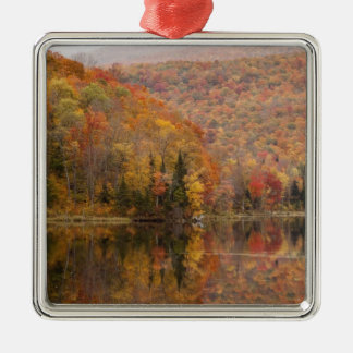 Autumn landscape with lake, Vermont, USA 2 Silver-Colored Square Decoration