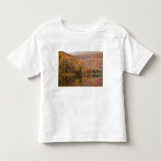 Autumn landscape with lake, Vermont, USA 2 Toddler T-Shirt