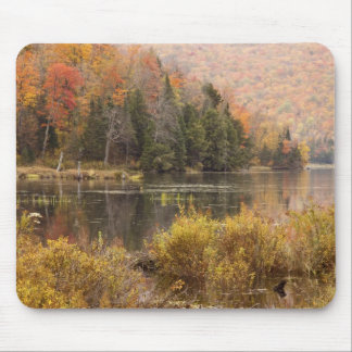 Autumn landscape with lake, Vermont, USA 3 Mouse Pad