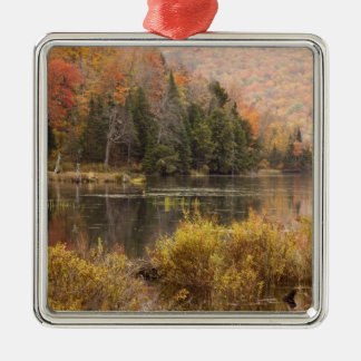 Autumn landscape with lake, Vermont, USA 3 Silver-Colored Square Decoration