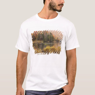Autumn landscape with lake, Vermont, USA 3 T-Shirt