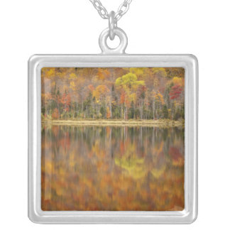 Autumn landscape with lake, Vermont, USA Silver Plated Necklace