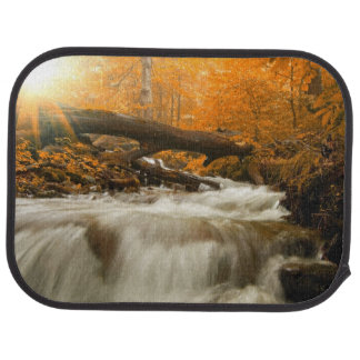 Autumn landscape with trees, river and sun car mat
