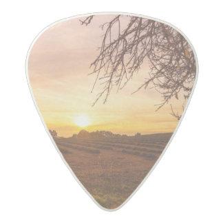 Autumn lavender field on sunset acetal guitar pick