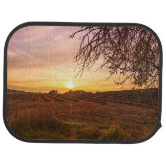 Autumn lavender field on sunset floor mat