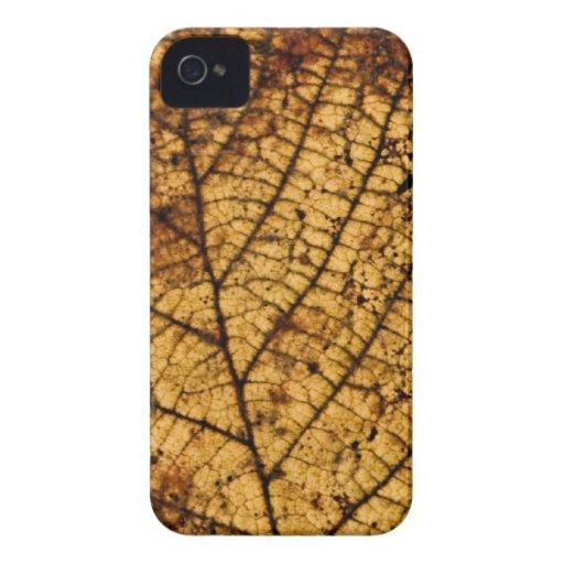 Autumn leaf Case-Mate iPhone 4 case