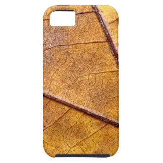 Autumn Leaf Case For The iPhone 5